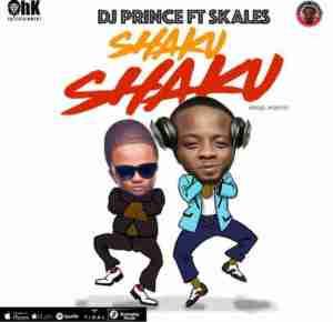 Instrumental: Skales - Shaku Shaku ft. DJ Prince